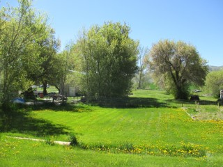Home on 2 Acres - Online