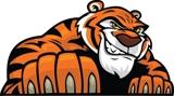 Bengal Boosters ISU Athletics